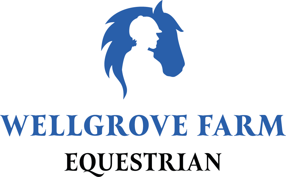 Wellgrove Farm Stables - horse riding stables and Pony Club Centre in Kent